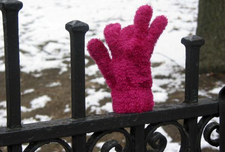 The Tale of the Other Glove
